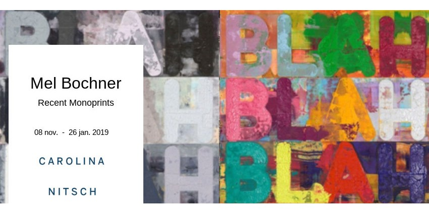 EXHIBITION // MEL BOCHNER // CAROLINA NITSCH PROJECT ROOM // NEW YORK