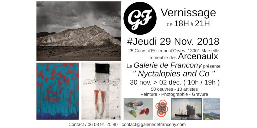 Vernissage Exposition - Nyctalopies and Co  - Jeudi 29 Nov